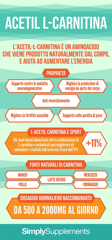 infographic-acetil-l-carnitina