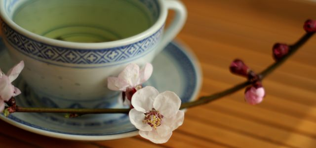 A large cup of green tea with a white flower stem as decoration