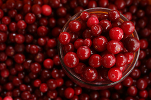 Cranberry fruit or extract offer a wide range of potential health benefits.