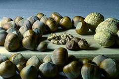 Nuts can be a great source of magnesium in your diet.
