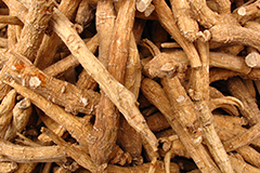 Ginseng is believed to support cognitive function.
