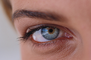 Lutein is present in large volumes in the macular of the eye.