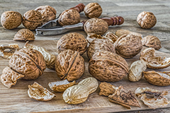Walnuts are a good source of ALA - a plant-based omega 3 oil with numerous health benefits.