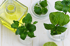 Peppermint oil may help to reduce feelings of nausea.