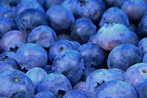 blueberries for skin health