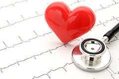 Vitamin E allegedly helps to protect the heart from atherosclerosis.
