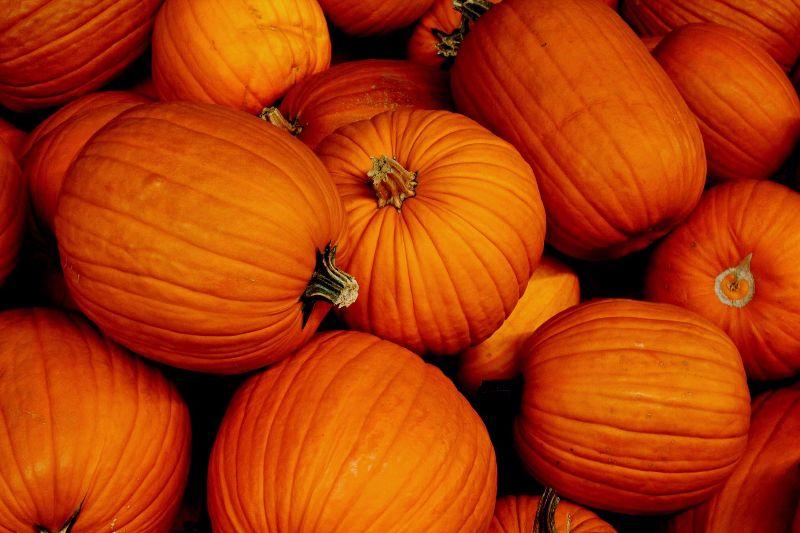 recettes-speciales-halloween