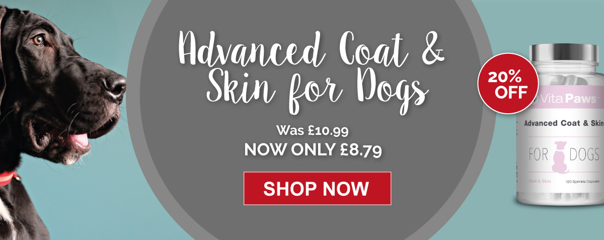 20% off Advanced Coat and Skin for Dogs