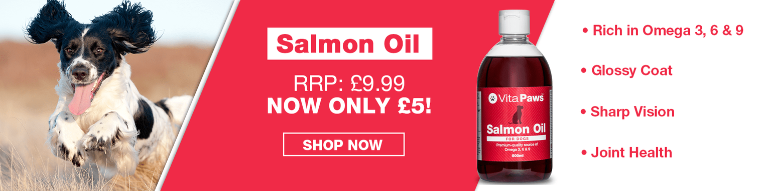 50% off Salmon Oil for Dogs